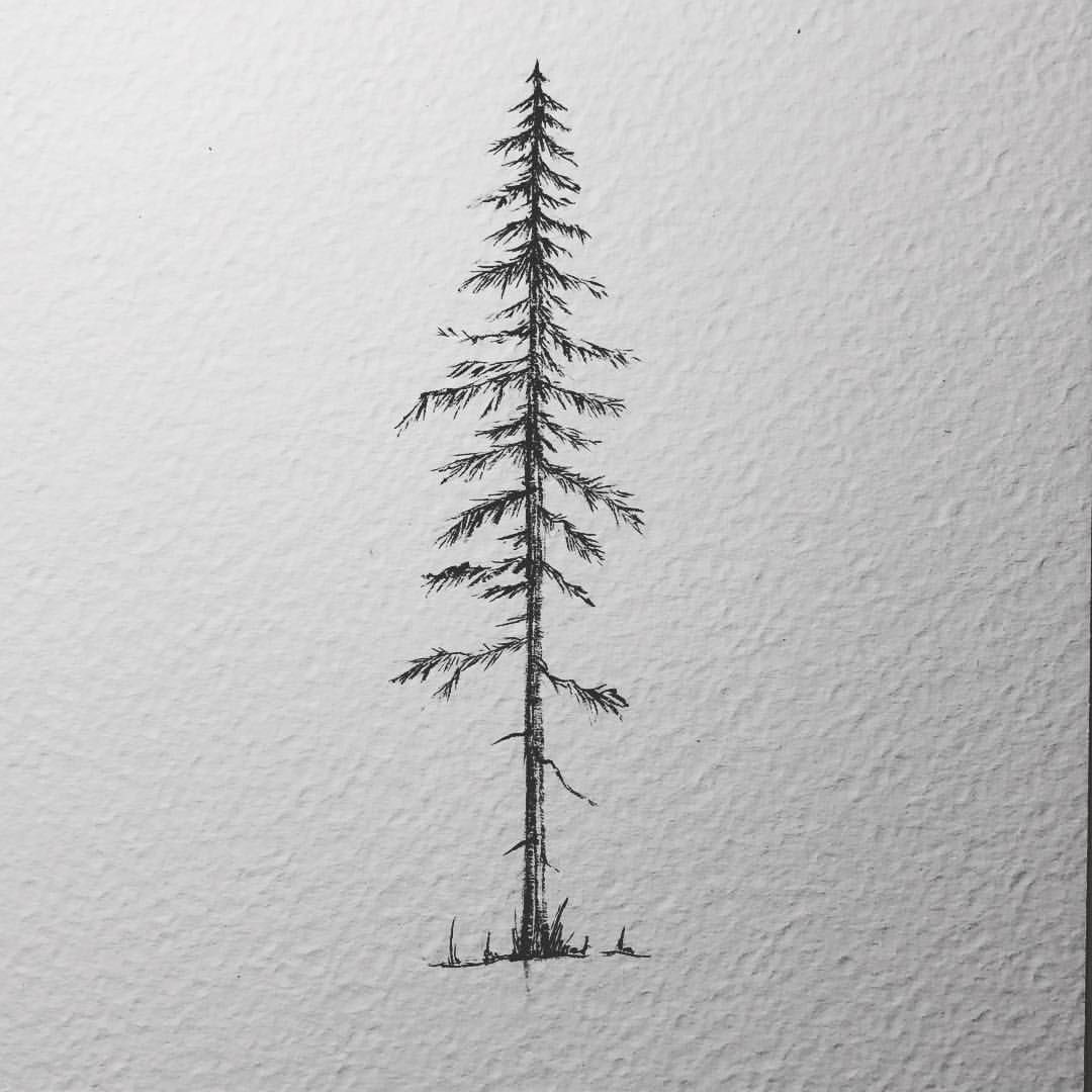 Photo of Sarah Hernandez sur Instagram: «Un pin pour ce lundi pluvieux (ne s'est pas arrêté toute la journée -.-) J'ai eu le plaisir de dessiner celui-ci pour une commission de tatouage. Je les dessinerais… »