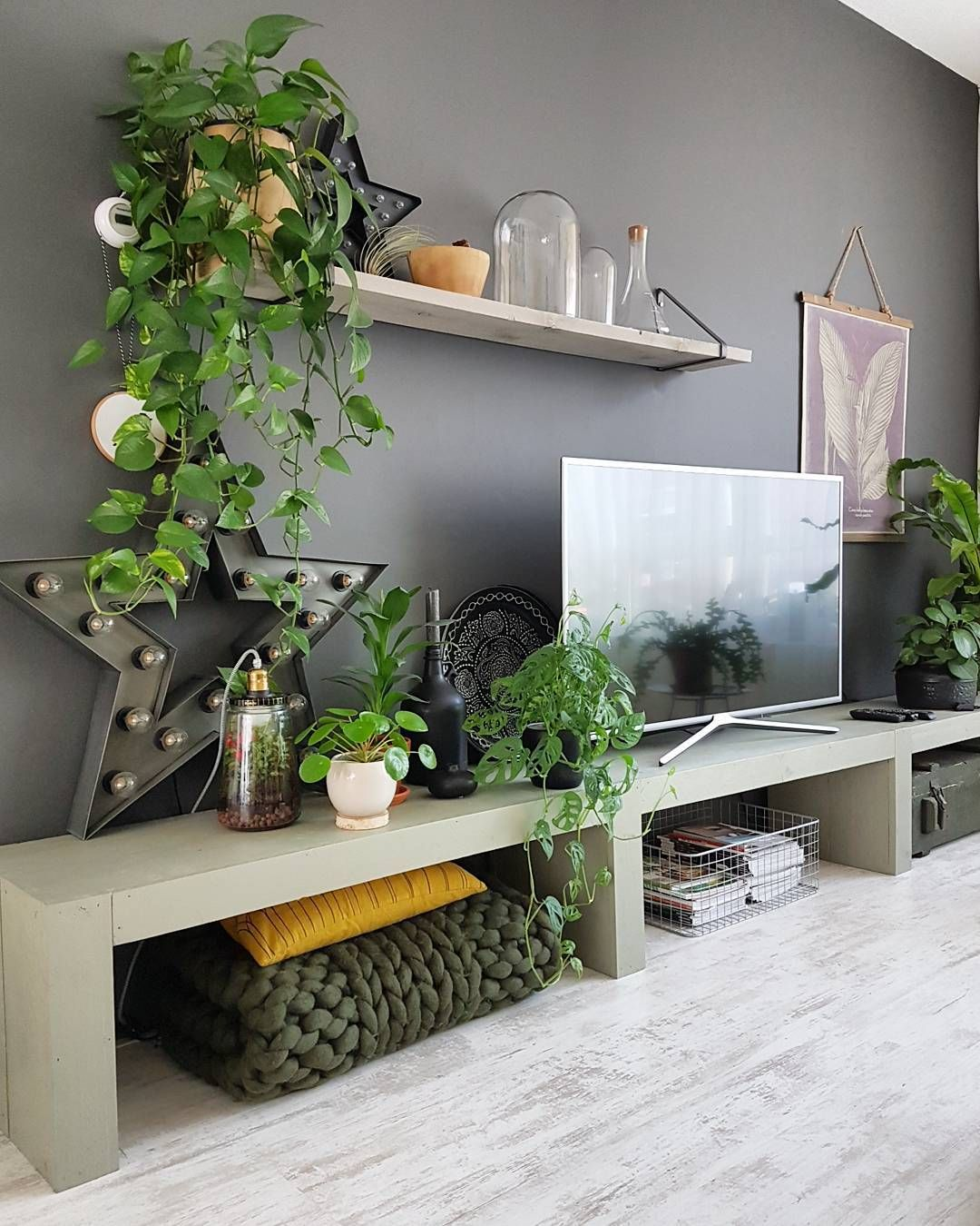 Living Area Cabinet Design: TV Cabinet And Indoor Plants