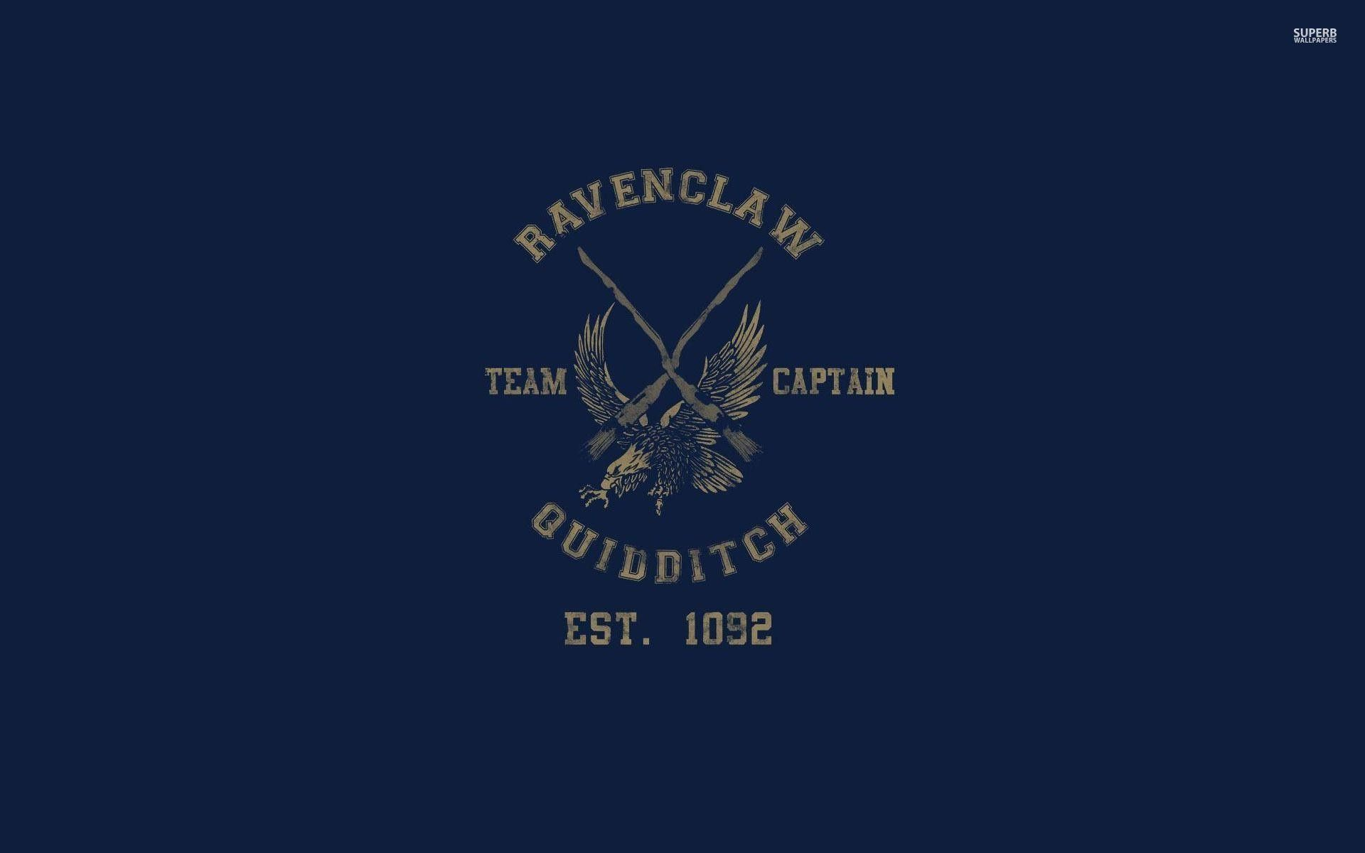 1920x1200 Ravenclaw Quidditch Team Harry Potter Wallpaper Vector Sfondi Harry Potter Fandom