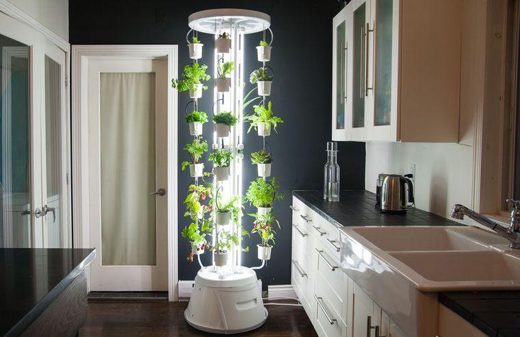 ein neues indoor-system ermöglicht es nun, früchte, gemüse, Terrassen ideen