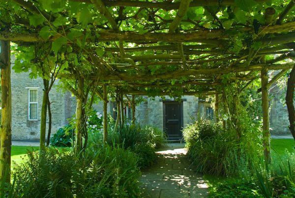 Photo Of Vine Pergola, North Garden At Kelmscott Manor, Lechlade,  Oxfordshire