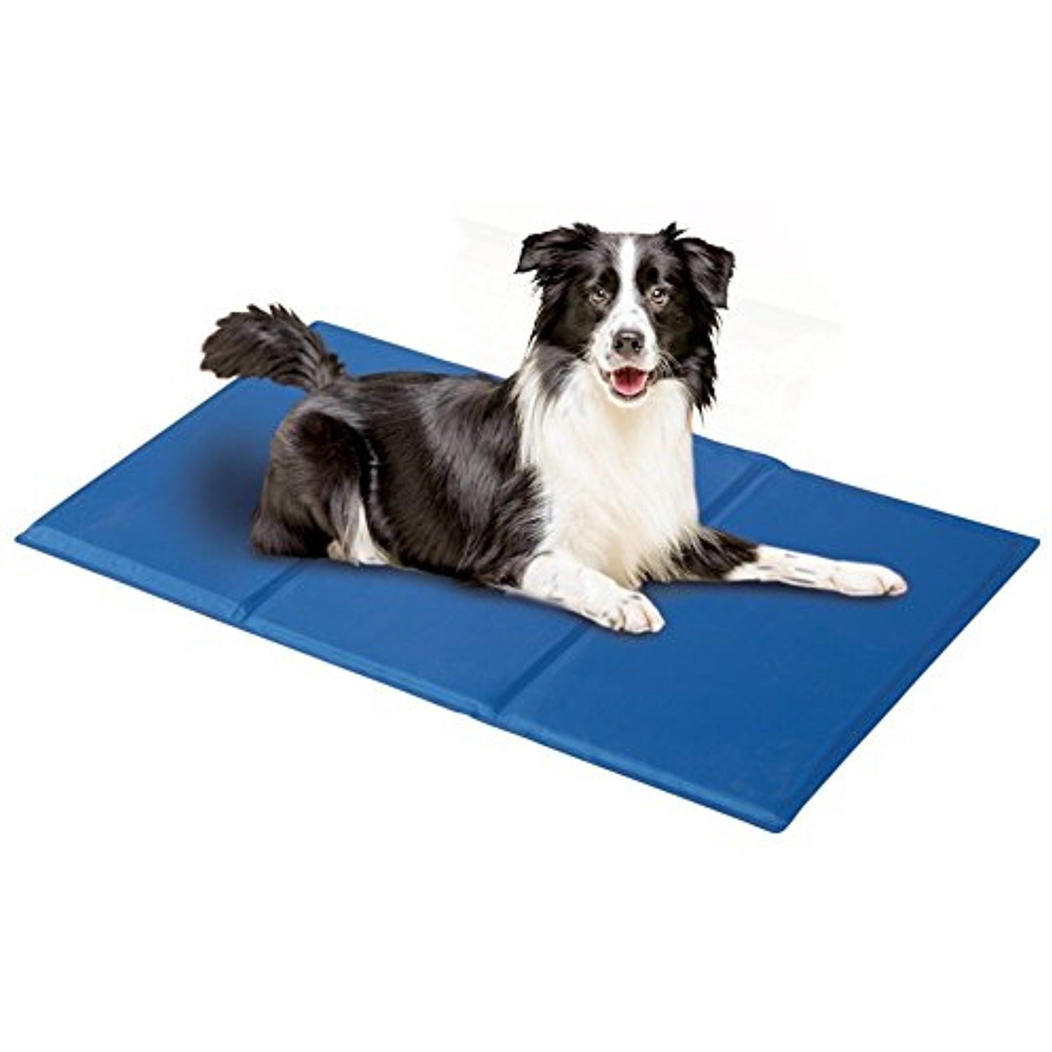 dp pet bed mats supplies inch by dogs ethical large for amazon com cooling