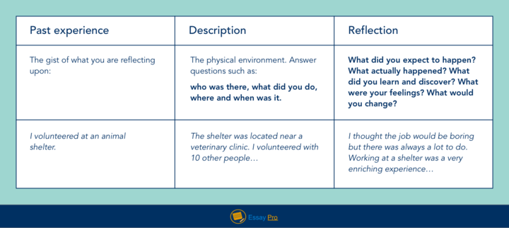 Example Of Reflective Essay Format Definition