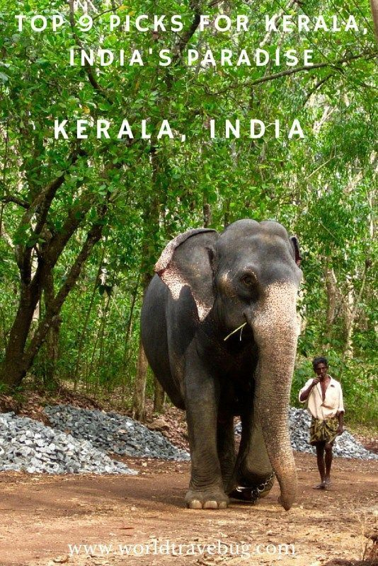 Geographically, the state of Kerala is a narrow strip of