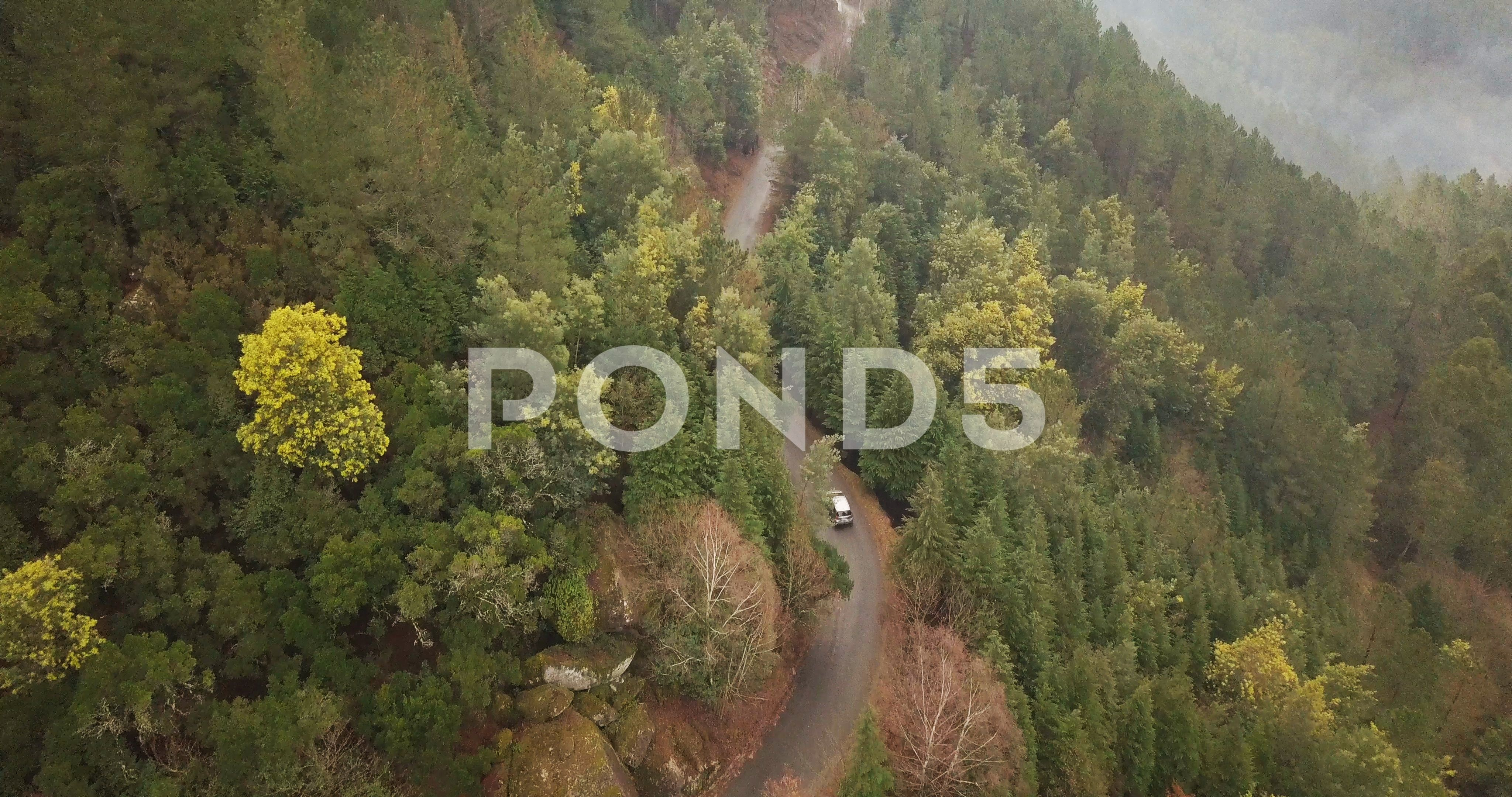 Drone Shot Of A Car Travelling In Tree Covered Winding Road In Mountains Stock Footage Ad Travelling Tree Drone Car Car Travel Travel Aerial View