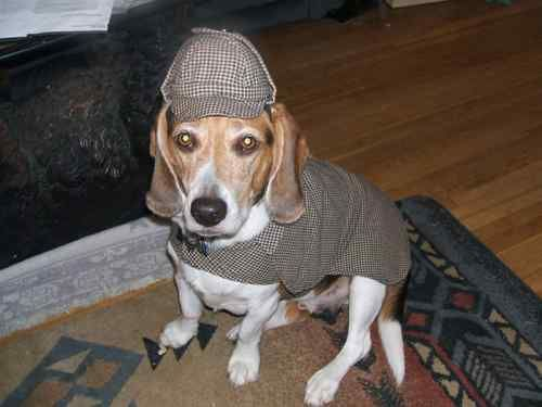 Sherlock Holmes Party Ideas Dogs Puppies Kitties Sherlock Holmes
