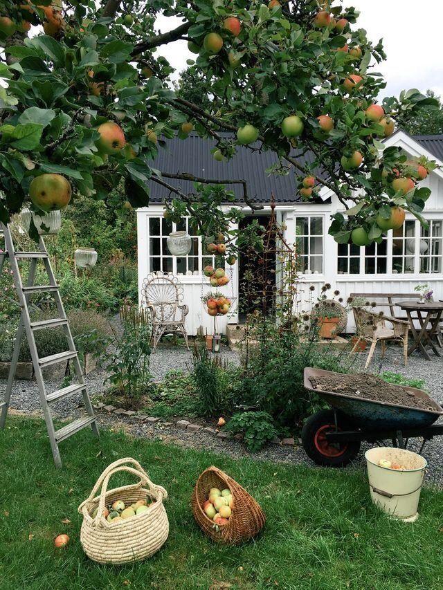 H O N E Y: Foto # küchengarten # gartenblumen # gärtenbythebay #homedesign #bedro …   – home