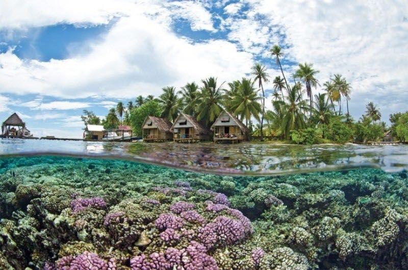 جزيرة أحبار جيزان المملكة العربية السعودية ١٩ French Polynesian Islands Tahiti Places To Travel