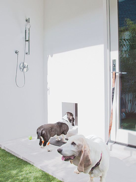 Genial How Adorable Is This #modern #dog Door And Outdoor #shower?