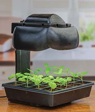 Tabletop Growing Set In 2020 Seed Starting Kits Seed Starting Grow Kit