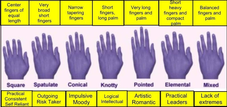 10 Interesting Facts About Palmistry Palmistry Palm Reading