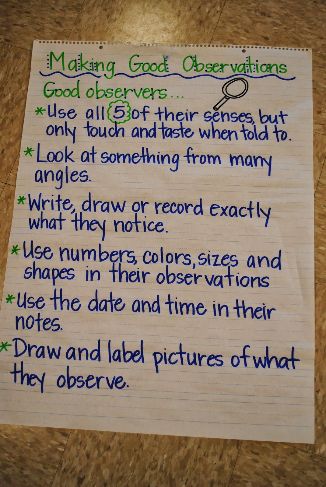 Making Observations Anchor Chart