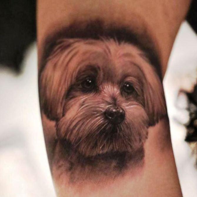 50 Dog Tattoo Ideas Dog Memorial Tattoos Dog Portrait Tattoo