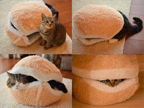 Vous voulez offrir à votre chat un endroit chaleureux et confortable dans lequel il se sentira en sécurité pour se reposer et dormir ? Alors ce Lit Cocon est ce