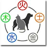 Home Holistic Veterinary House Calls Holistic Veterinary Pet