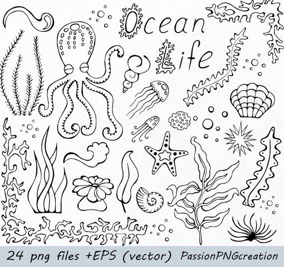 Ocean Life Clip Art Png Eps Ai Vector Doodle Clipart Etsy Ocean Doodles Ocean Doodle Ocean Drawing