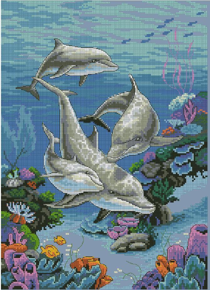 Схема вышивки дельфинов бесплатно