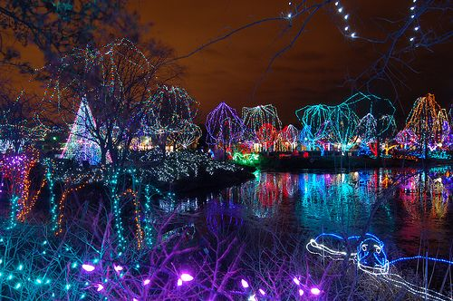 Columbus Zoo Wildlights Christmas Lights By Cdubya1971 Via Flickr Columbus Zoo Zoo Lights Columbus