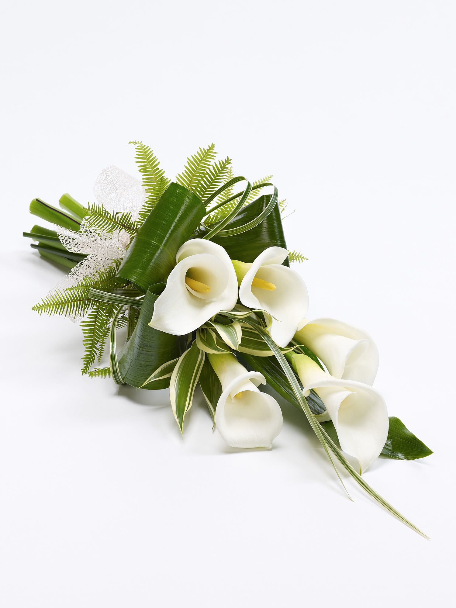 Calla lily sheaf interflora pinterest calla calla lily sheaf white classic white calla lily tied with a natural ribbon are complemented by folded aspidistra leaves and dracaena to create this c izmirmasajfo