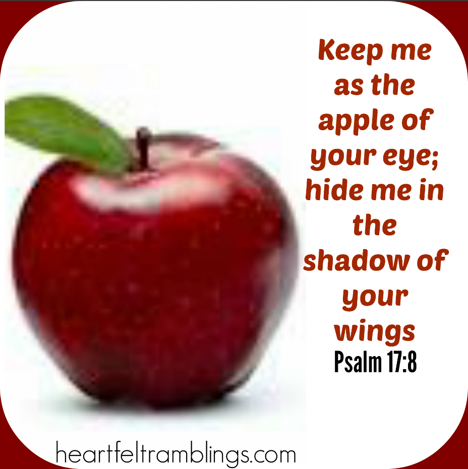 you are the apple of his eye quotes pictures inspirational
