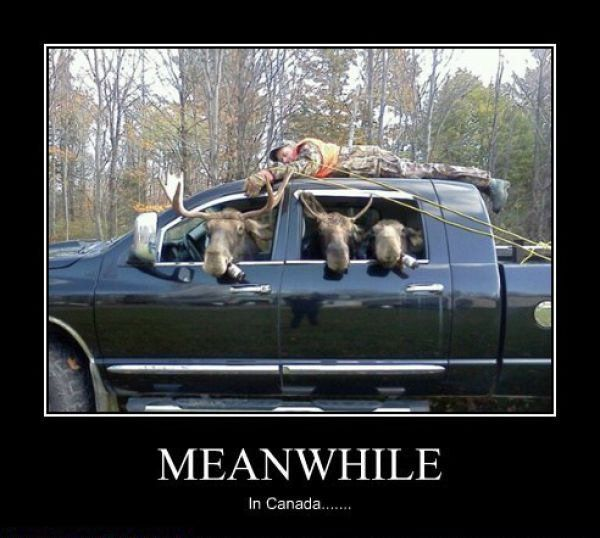 Meanwhile In Canada Funny Hunting Pics Hunting Humor Hunting Jokes