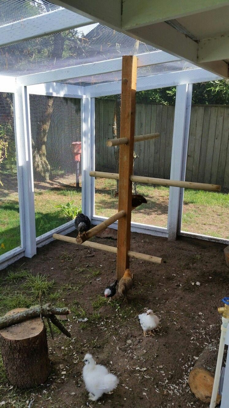 Pioneering unraveled chicken coop diy View all Products #desertlife