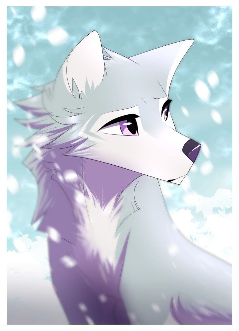 Photo of anime wolf drawing