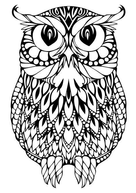 Раскраска для взрослых большая сова | Раскраски, Картинки ...