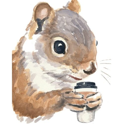 everythingiknowanddont:Squirrel Watercolour PRINT - Coffee Drinking Squirrel Painting, 8x10 Print, Funny Painting   ❤ liked on Polyvore (see more animal wall art)