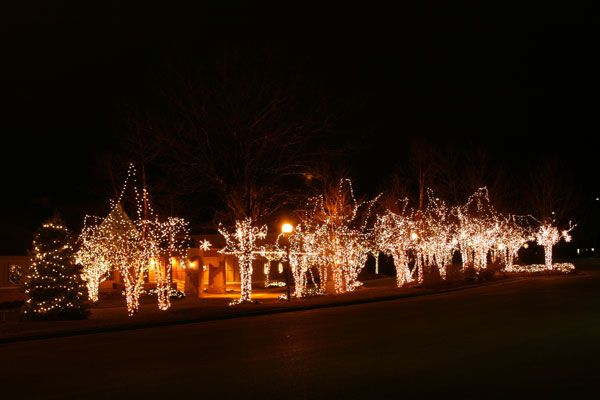 Portfolio (With images) | Professional christmas lights ...