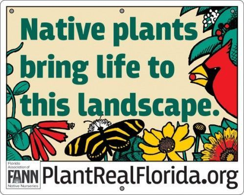 #florida #Learn #Native #neighbors #plant #Plants #put #Real #sign #thi #visitors #yard       #neighbors #visitors #florida #florida #plants #native #einheimischepflanzen