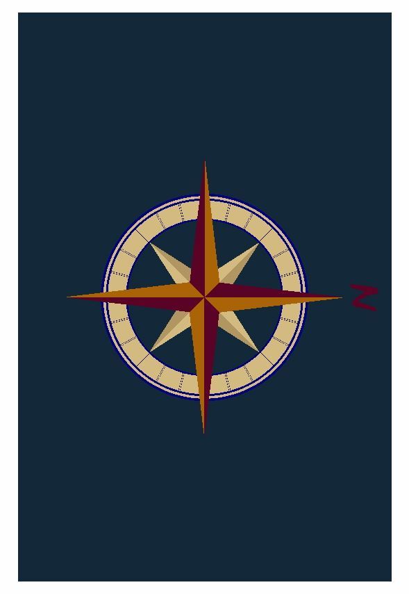 Here Is A Rendering For A Custom Made Compass Rose Rug