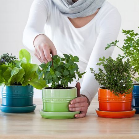 Brighten Up Your Kitchen With These Nifty Le Creuset Herb Planters.