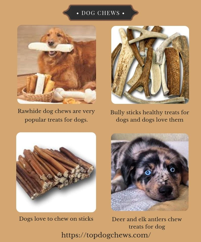 Top Dog Chews Is A Reputed Outlet And Provides The Best Quality