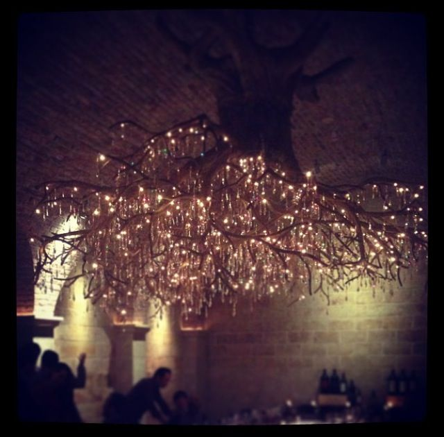 That upside down tree chandelier | Inspiration & things I like ...