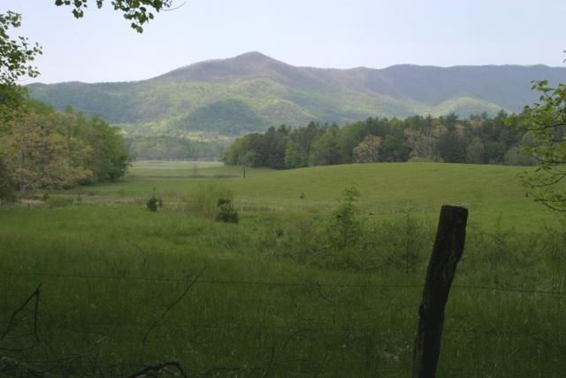 Cades Cove in the Great Smoky Mountains. Will always hold dear the trips there with my family.