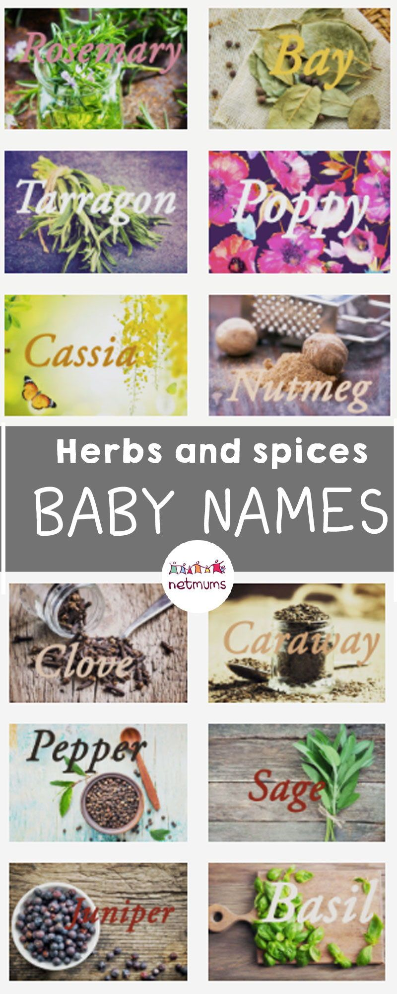 Herbs And Spices Baby Names Are You Dreaming Of A Baby Name With A Little Bit Of Spice Here Are Some Gorgeous Fragrant Herbs Baby Cute Girl Names Baby Names