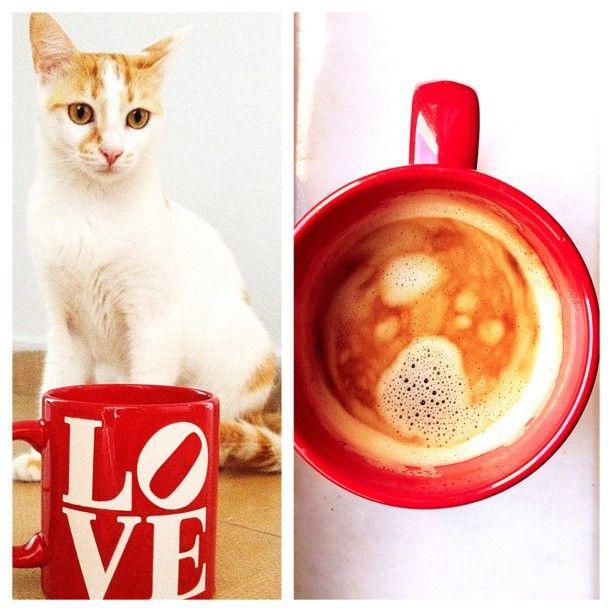 gununkahvesi, coffee of the day from tuğçe öztürk, Photo by tugceozturkk • Instagram