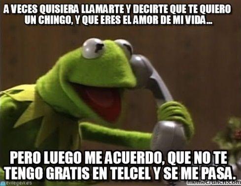 eb632ff913bde054f0e08a082c175081 los mejores memes de la rana rené para compartir en facebook ⋮ es
