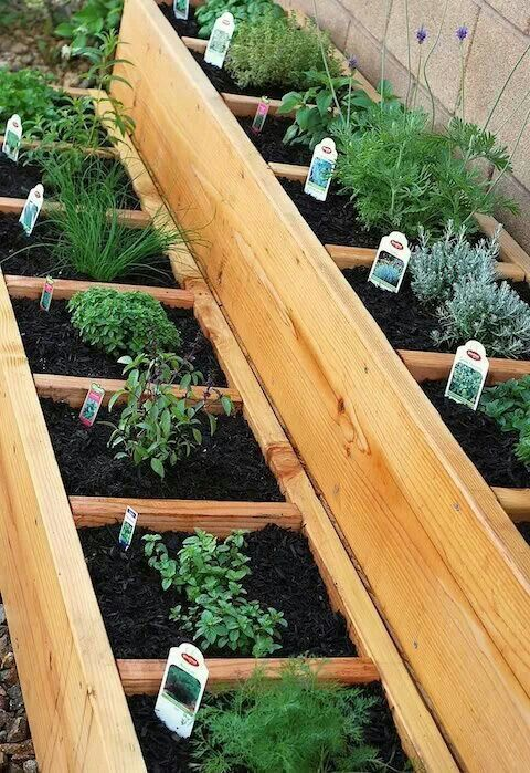 Nice And Simple Herb Garden For The Side Of The House Garten Hochbeet Garten Garten Ideen