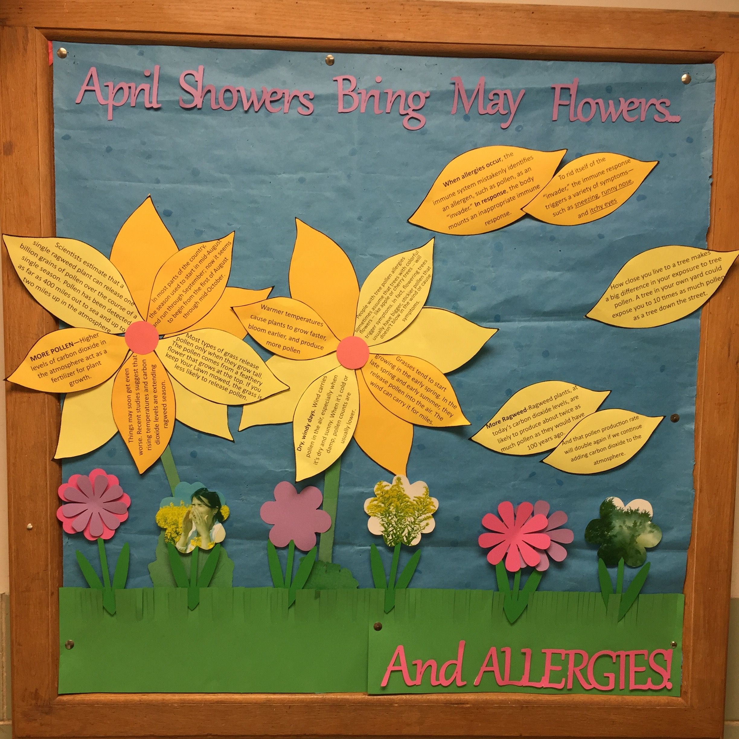 Go green vegetable bulletin board idea myclassroomideas com - April And May Allergy Ragweed Season Bulletin Board School Health
