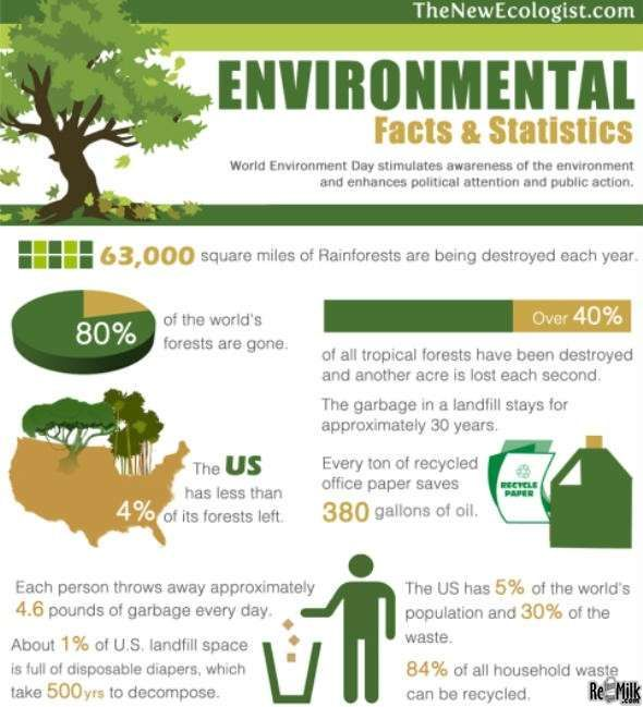 the importance of the issue of rainforest destruction The importance of forests  impact of deforestation on climate change it is now widely  dwindling rainforest.