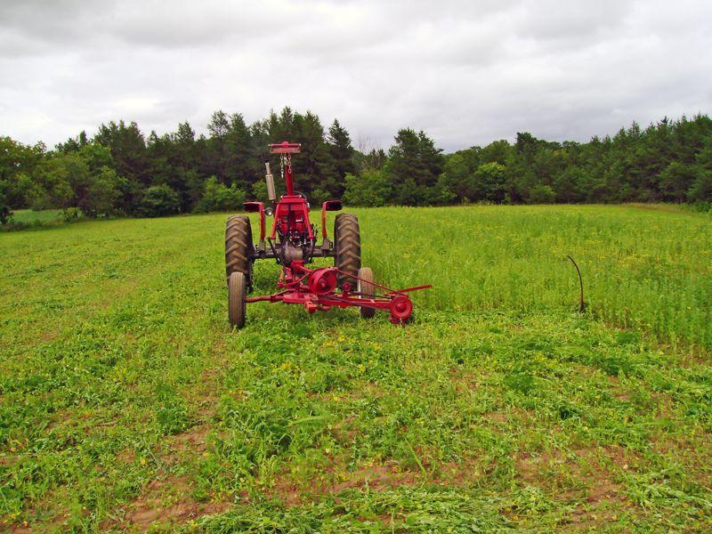 mostprofitablefarming Countryside, Farm field, Farm