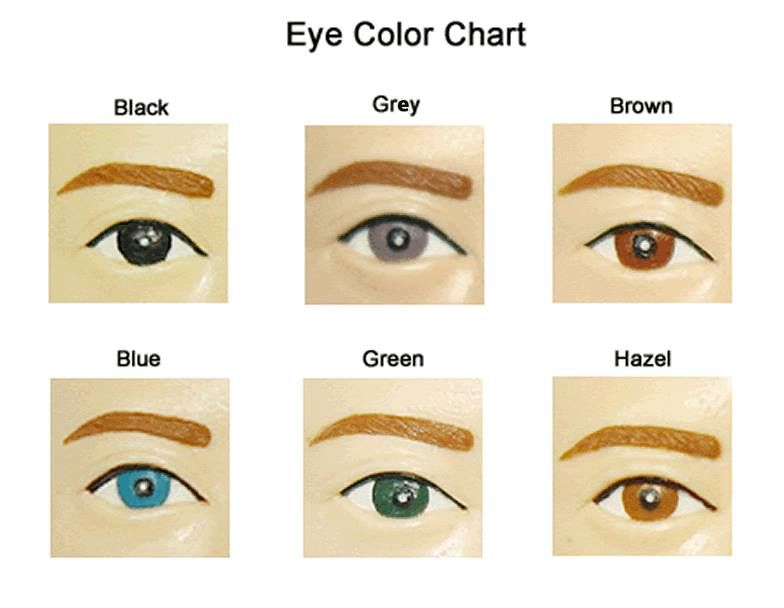 eye color chart | English vocabulary source | Pinterest ...