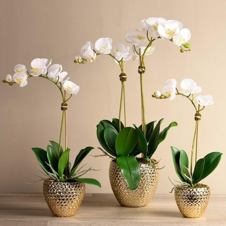 Paradise Orchid Arrangement Silk Orchid Artificial