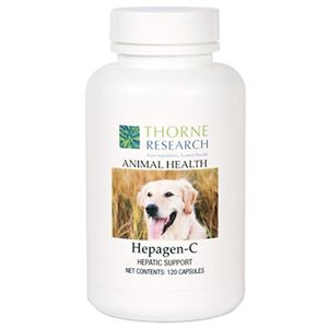 Thornevet Hepagen Liver Support For Dogs Cats 90 Chews Pet Health Joint Health Supplement Curcumin Supplement