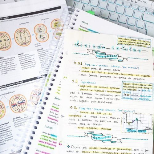 10 Beautiful Pictures of Class Notes that are Serious Study Goals #aestheticnotes