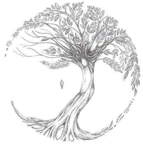 Browse All Of The Tree Tattoos Photos Gifs And Videos Find Just