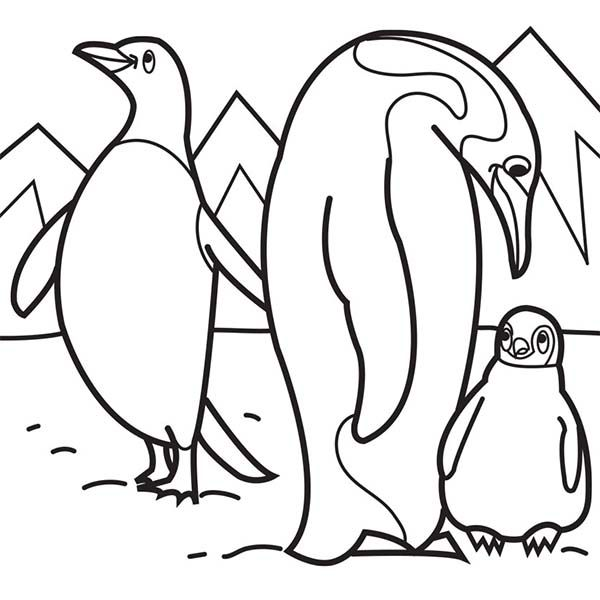 Arctic Animals Penguin Parent Teaching Their Baby In Coloring Page