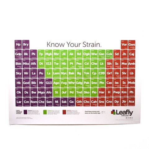 Strain Poster - Leafly Gear | Gift Ideas in 2019 | Cannabis